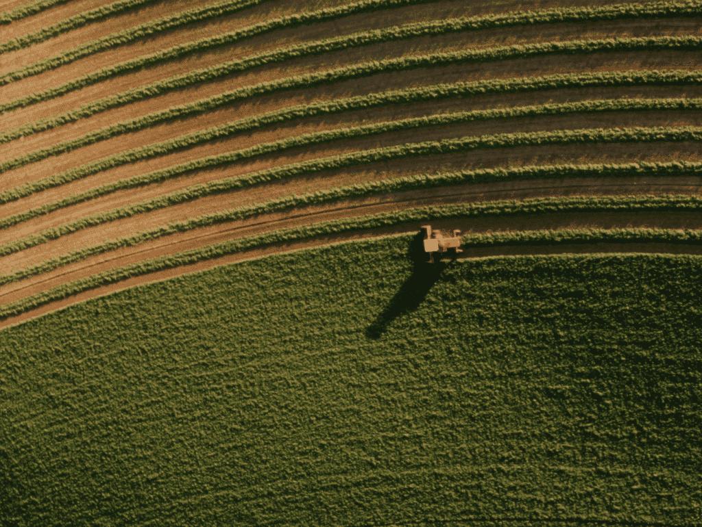 filmari cu drona in agricultura pentru cultura ta
